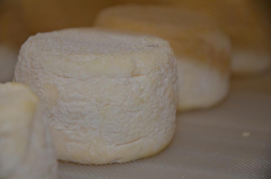 madurado de cantagrullas Lechazos y quesos Granja Cantagrullas, estandartes de un territorio