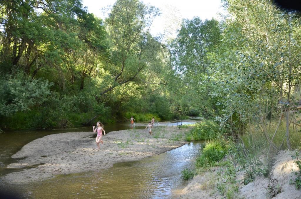 en el río Adaja 1024x678 De paseo por el río Adaja