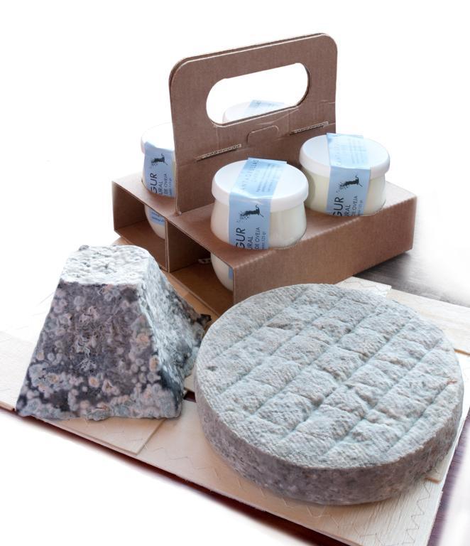 Bodegón quesos y yogures Cantagrullas Curso de quesos en Granja Cantagrullas