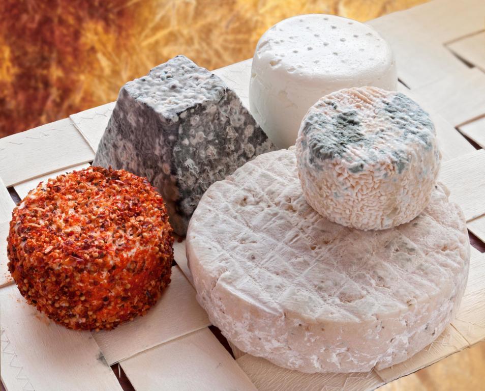 Quesazos de leche cruda Cantagrullas Curso de quesos en Granja Cantagrullas