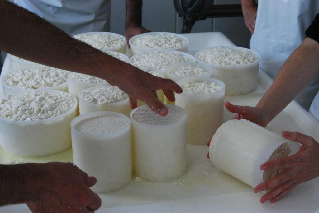 I Curso de quesos en Cantagrullas   i I Curso de queso en Cantagrullas