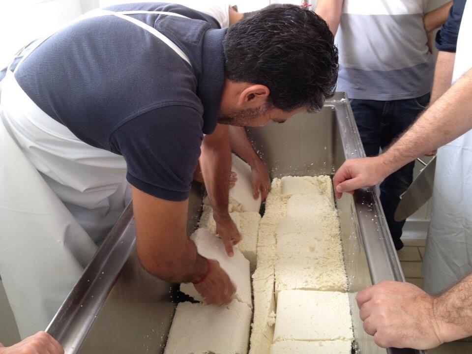 5 paco roncero en cantagrullas elaborando queso de leche cruda 5 El queso de Paco Roncero