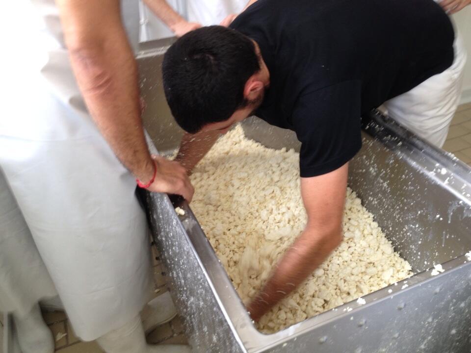 7 paco roncero en cantagrullas elaborando queso de leche cruda 4 El queso de Paco Roncero