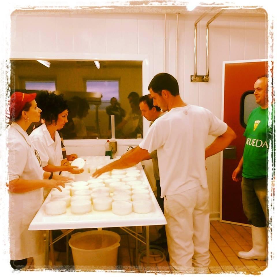 curso de quesos septiembre 13 Curso de elaboración de queso con leche cruda
