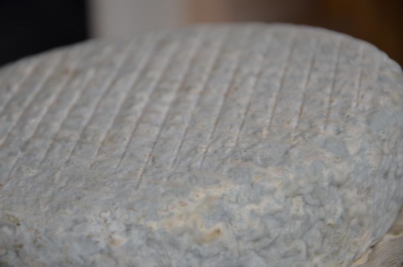 quesos Cantagrullas verano 2013  35 Tabla de quesos artesanos